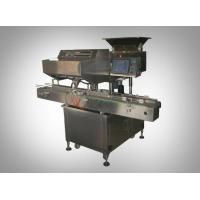 Counting & Filling MachineModel—-CCD-16