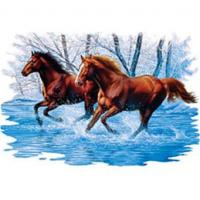 Two Horses in Water Adult T-shirt A2335D