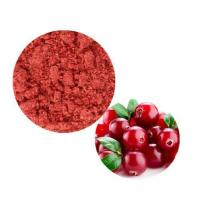 Wholesale Cranberry Powder from china suppliers