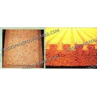China vermiculite boards production line on sale