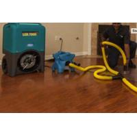 Wholesale Water Damage Restoration Services in Folsom CA from china suppliers