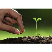 Buy cheap Agricultral Application from wholesalers