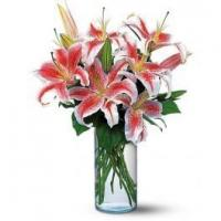 Wholesale flower products Lovely Lilies from china suppliers