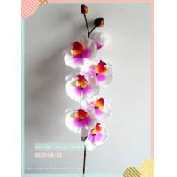 Wholesale artifical flowers Item No:HM0104TF from china suppliers