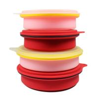 Silicone Lunch Box Eco-friendly Kitchenware Food Storage silicone foldable lunch box with lock