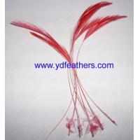 Wholesale Loose feather / fancy feather from china suppliers