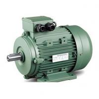 Buy cheap IE2 High Efficiency Induction Electric Motor from wholesalers
