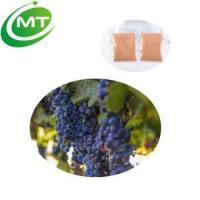 Wholesale Good water solubility Red Grape Skin Extract powder from china suppliers