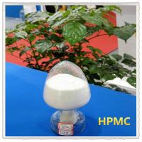 Wholesale Thickening auxiliary HPMC white powder for gypsum based plaster 45000cps from china suppliers