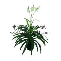 Wholesale Haihong Insights (Indoor & Outdoor) artificial gladiolus flower plant from china suppliers
