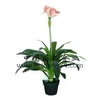 Wholesale Haihong Insights (Indoor & Outdoor) artificial hippeastrum flower plant flower plant from china suppliers