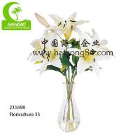 Wholesale Haihong Insights Floriculture 30 from china suppliers