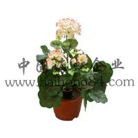 Wholesale Haihong Insights Artificial Flowers (Indoor & Outdoor) artificial GERANIUM flower plant from china suppliers