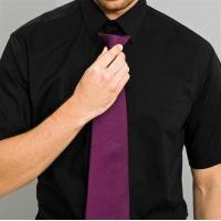 Clothing Colours fashion clip tie