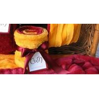 Wholesale Bed & Bath USC and UCLA Scarf from china suppliers