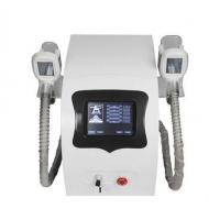BLS201D Cryolipolysis Freezing 2 handles