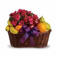 Wholesale Blooms and Fruit Gift Basket from china suppliers
