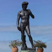 Wholesale Bronze reproduction Michelangelo buonarroti statue sculpture of David from china suppliers