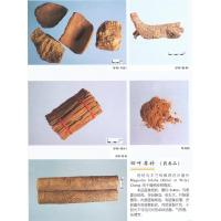 Wholesale Twolobed Officinal Magnolia Bark from china suppliers